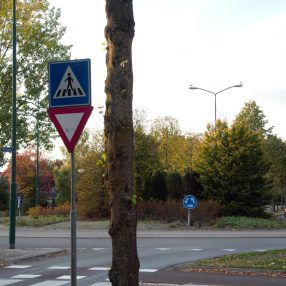 rotonde koningsweg